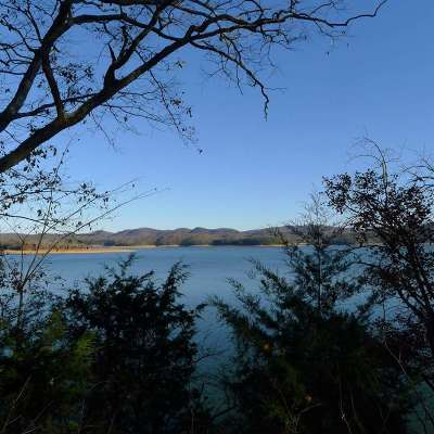 Grainger County, Hamblen County, Hawkins County, Jefferson County Residential Lots & Land For Sale: Lot 10 Whipperwill Ln