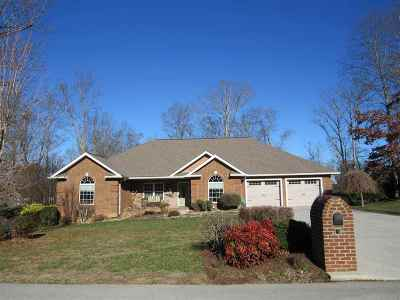 Dandridge Single Family Home For Sale: 1448 David Swann Drive