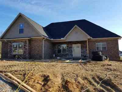 Hamblen County Single Family Home For Sale: 415 Cummings Ct