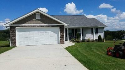 Bean Station Single Family Home For Sale: 258 Drew Dr
