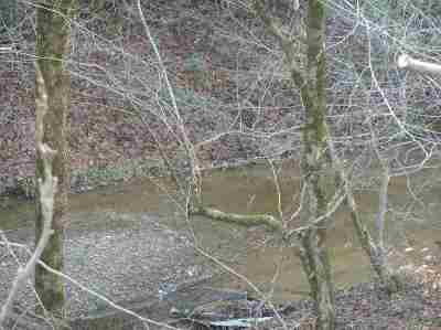 Claiborne County, Cocke County, Grainger County, Greene County, Hamblen County, Hancock County, Hawkins County, Jefferson County Residential Lots & Land For Sale: 2.75 Acres off Middle Creek Road