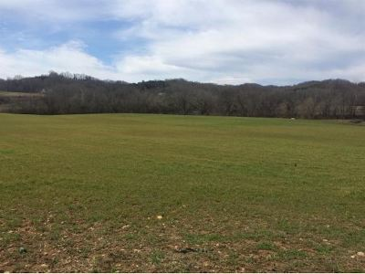 Residential Lots & Land For Sale: Stepp Rd.