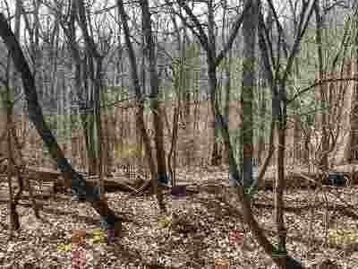 Hamblen County Residential Lots & Land For Sale: Lot 6 Dougherty Dr