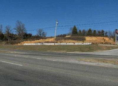 Dandridge Residential Lots & Land For Sale: PRCL 34 Highway 92 S