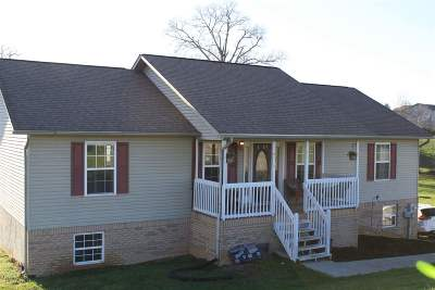 Sevierville Single Family Home For Sale: 1707 Aster Court #133