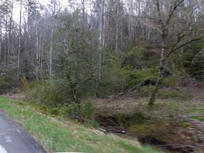 Sevierville Residential Lots & Land For Sale: Boogertown Road