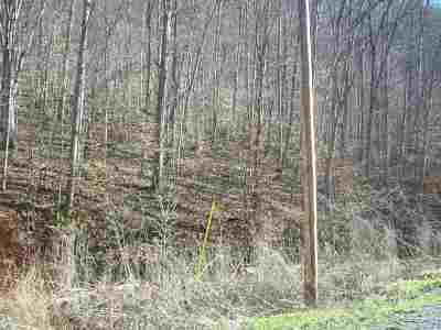 Claiborne County, Cocke County, Grainger County, Greene County, Hamblen County, Hancock County, Hawkins County, Jefferson County Residential Lots & Land For Sale: 310 Sycamore Cl.