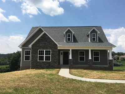 Hamblen County Single Family Home For Sale: 4227 Stansberry Road