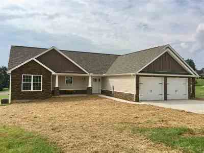 Hamblen County Single Family Home For Sale: 4245 Stansberry Road