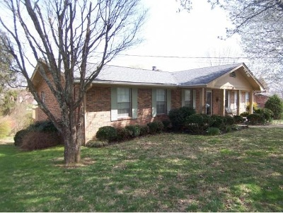 Single Family Home For Sale: 208 Skyview Drive