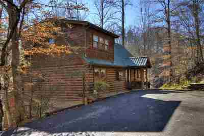 Sevierville Single Family Home For Sale: 801 Bear Run Way #409