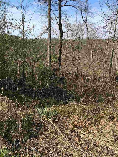 Hamblen County Residential Lots & Land For Sale: 1175 Cherry Blossom Lane