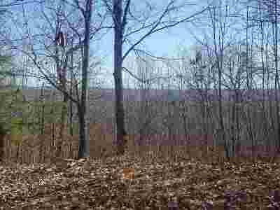 Residential Lots & Land For Sale: Lot 254 Red Creek Hollow