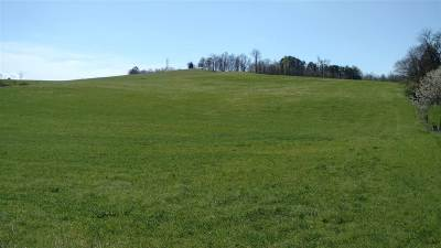 Hamblen County Residential Lots & Land Auction: Dover Rd