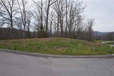 Russellville Residential Lots & Land For Sale: 1975 Turner Landing Road