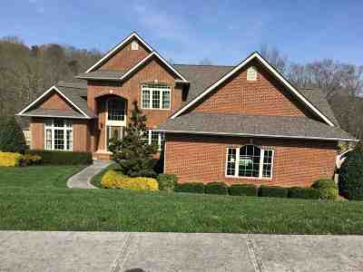 Dandridge Single Family Home For Sale: 2189 Majestic Circle