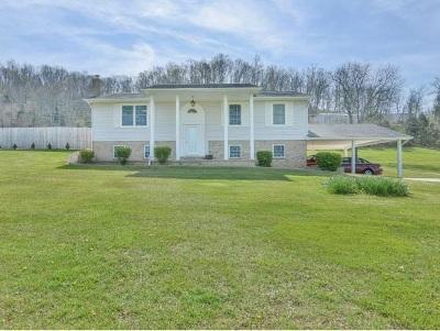 Single Family Home For Sale: 328 Quaker Knob Road