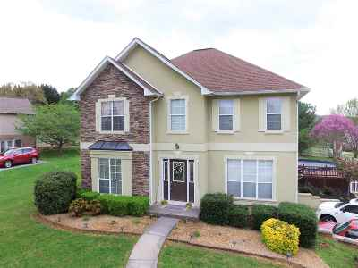 Single Family Home Sold: 1074 Hickory View Dr