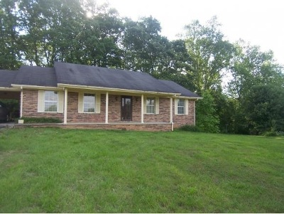 Grainger County Single Family Home For Sale: 399 Terrace View Dr