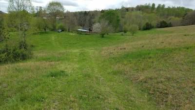 Grainger County Residential Lots & Land For Sale: 222 Liz Green Road