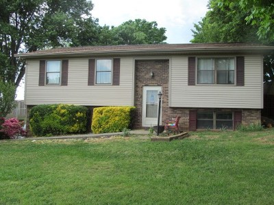 Hamblen County Single Family Home For Sale: 1136 Cherry Blossom Lane