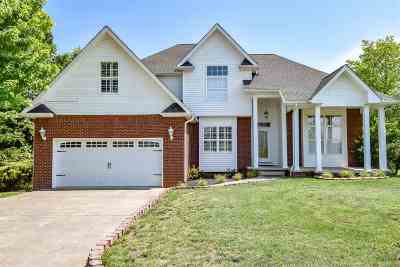 Dandridge Single Family Home For Sale: 842 Pinnacle Drive