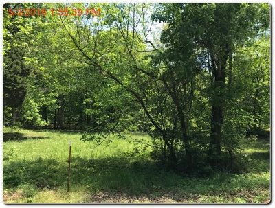 White Pine Residential Lots & Land For Sale: Lot 19 Harrison Ferry Road