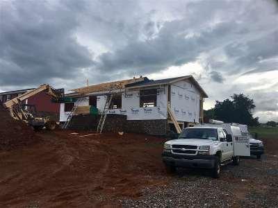 Single Family Home For Sale: 6165 Chuckey Pike