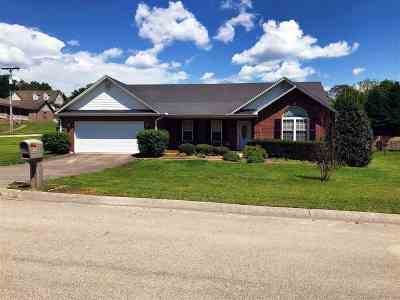 Morristown Single Family Home For Sale: 1476 Shady Creek Ct