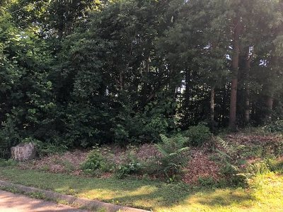 Hamblen County Residential Lots & Land For Sale: 1700 Shields Drive