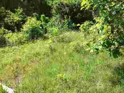Hamblen County Residential Lots & Land For Sale: 5925 Brights Pike