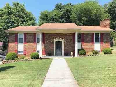 Single Family Home For Sale: 4291 Brockwood Drive