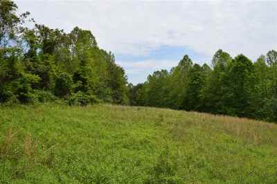 Cocke County, Greene County, Grainger County, Hamblen County, Jefferson County, Hancock County, Union County, Claiborne County Residential Lots & Land For Sale: 23.96 Ac Tater Valley Road