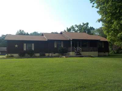 Grainger County Single Family Home For Sale: 159 Old Rutledge Pike
