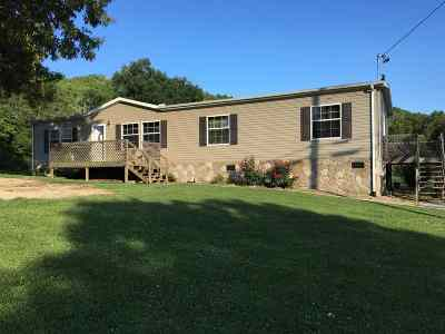 Grainger County Mobile/Manufactured For Sale: 673 Little Valley