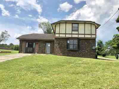 Russellville Single Family Home For Sale: 6471 E Andrew Johnson Hwy