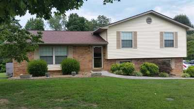 Hamblen County Single Family Home For Sale: 2828 Northview Drive
