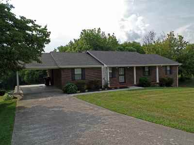 Jefferson City Single Family Home For Sale: 1406 Clinch View Circle