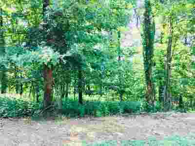 Mooresburg TN Residential Lots & Land For Sale: $59,900