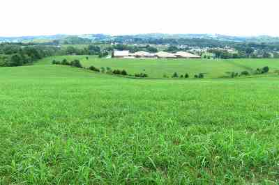 Whitesburg Residential Lots & Land For Sale: 6635 Saint Clair Road