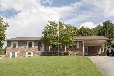 Jefferson County Single Family Home For Sale: 1407 Clinch View Circle