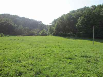 Grainger County Residential Lots & Land For Sale: Coffey Ln