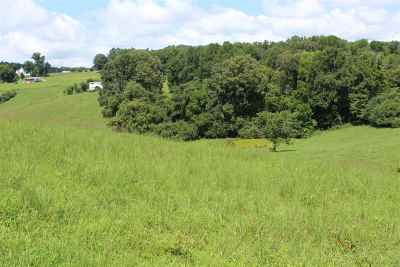 Grainger County Residential Lots & Land For Sale: Parcel 40 Odom Road