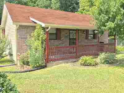 Single Family Home For Sale: 401 Cain Avenue