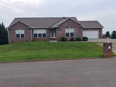 Sevierville Single Family Home For Sale: 2555 Covington Circle