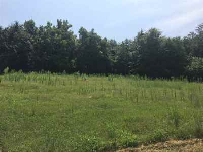 Grainger County Residential Lots & Land For Sale: Rocky Springs Rd.