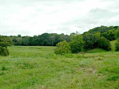 White Pine Residential Lots & Land For Sale: 2154 Carmichael Road