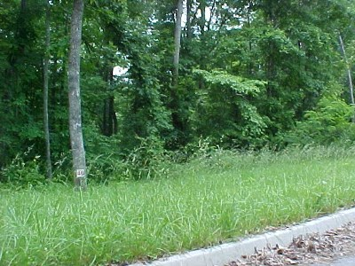 Grainger County Residential Lots & Land For Sale: Lot 46 Cherokee Drive