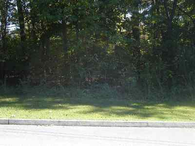 Grainger County Residential Lots & Land For Sale: Lot 17 Cherokee Drive