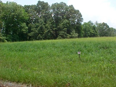 Grainger County Residential Lots & Land For Sale: Lot 19 Cherokee Drive